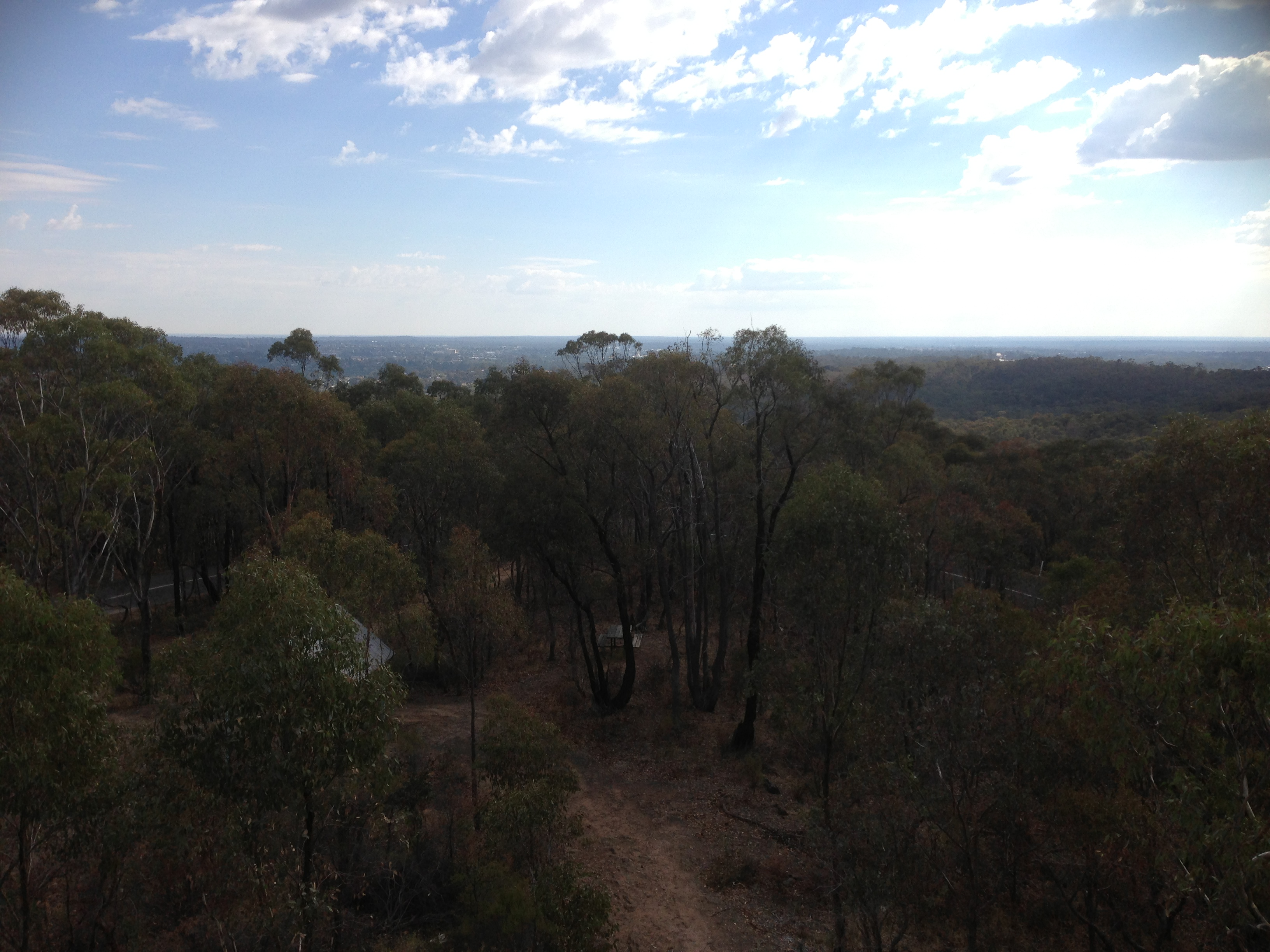 View from the top of One Tree Hill Tower