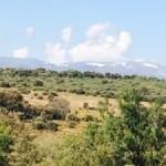 Day 23 Astorga to Rabanal del Camino