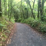 Epic Hikes & Treks: Burke and Wills Trail