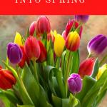 Springing into Spring