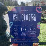 Bendigo Bloom